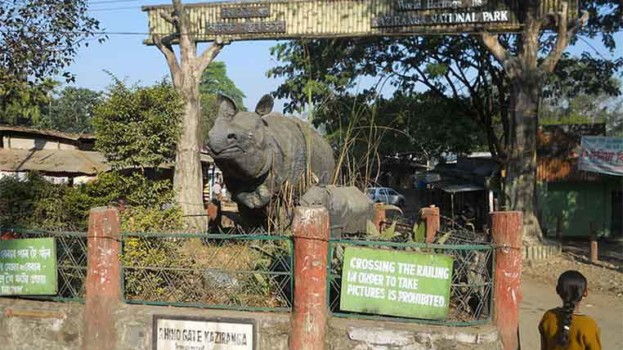 Vehicles crossing 40-km speed limit near Kaziranga to pay Rs. 5K fine: NGT